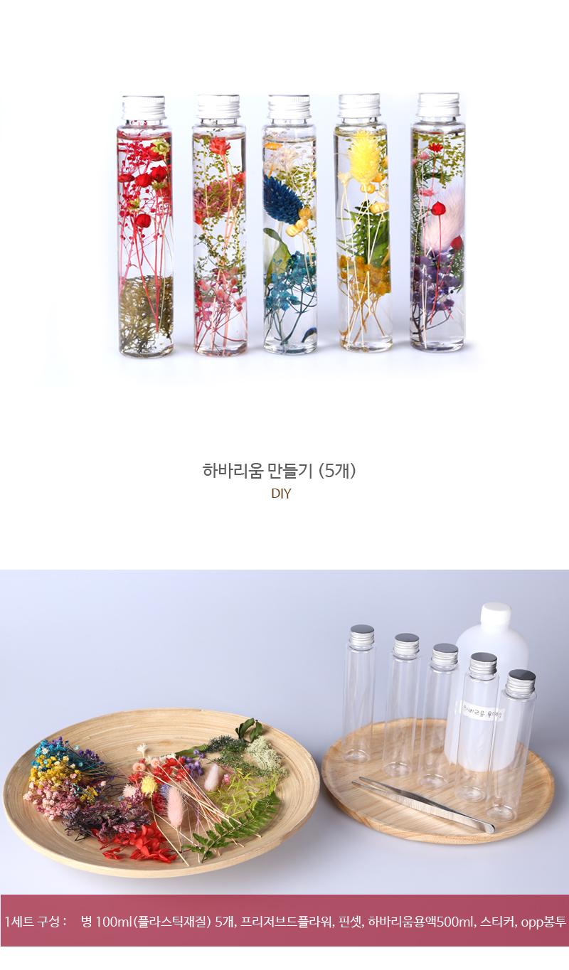 하바리움 5개 만들기 DIY - 빼꼬빼꼬, 32,000원, 조화, 프리저브드